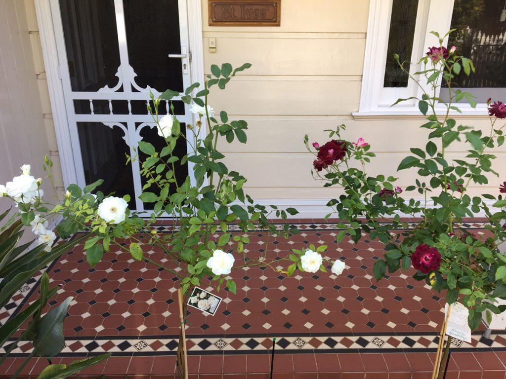 Tessellated Floor Tiles Brighton | Verandah Tiles | Melbourne | Luscombe Tiles